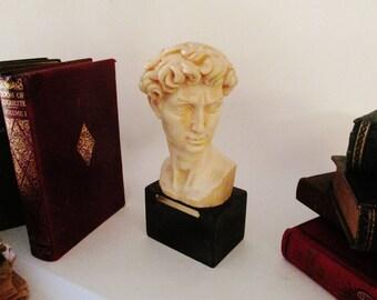 Santini Sculpture, David, Made in Italy, Santini Head of David, Michelangelo's David, Art Decor, Mantel Decor