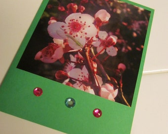 Instagram Photo Card -- Cherry Blossoms -- Greeting Card -- Blank Inside