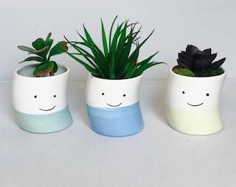 Original Succulent-Planter-Set | Set of 3 | Succulent-Planter | Succulent Gift | Handmade Ceramics from my Charleston, SC Studio