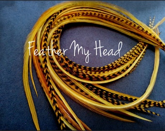 Feather Hair Extension 11 - 14 Inches Long (28-36cm) Thin Fashion Euro - Grizzly Stripe And Solid Mix - 10 Pc Butterscotch
