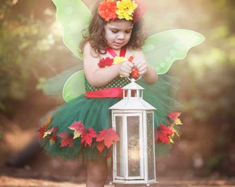 Fall Fairy Costume - Girls Fairy Dress - Woodland Fairy - Fairy Outfit - Fairy wings - Fairy Tutu Dress - Fall Fairy Crown - Pixie Fairy