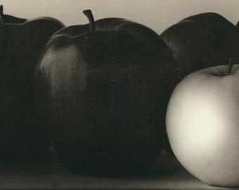 Apples large still life panoramic abstract fine art photo vintage photography large Fine Art original mid century modern