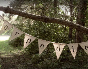 CARPE DIEM Burlap Banner,  Banner Pennant, Dorm Room Decor, Positive Thoughts, Seize The Day, Photo Prop, Photography Prop