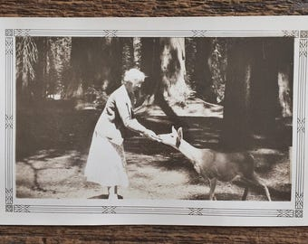 Original Vintage Photograph Darling Deer