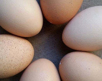 Blown eggs from free range chickens, brown eggs, tan eggs, easter eggs