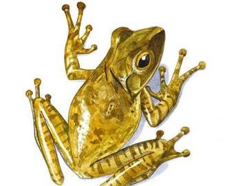Signed tree frog print (PL01)