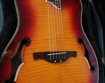 1970's Crafter Boutique, Handmade, Hybrid/Acoustic-Electric Guitar/SALE PRICE posted