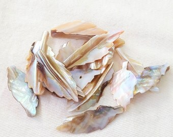 Carved Mother of Pearl Shell Leaves