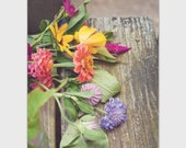 Country flowers photography postcard, 5 x 7 greeting card, wildflowers, rustic, fine art floral, note card, flower garden, gardener