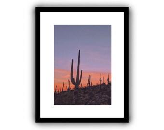 Desert Saguaro Sunset - 5x7 Tucson Arizona Desert Archival Photographic Print