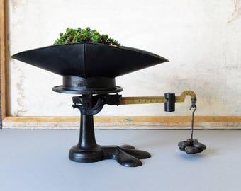 Vintage cast iron scale, counter top scale, farmhouse decor, rustic kitchen decor, JONES of BINGHAMTON Brass & Cast Iron Mercantile