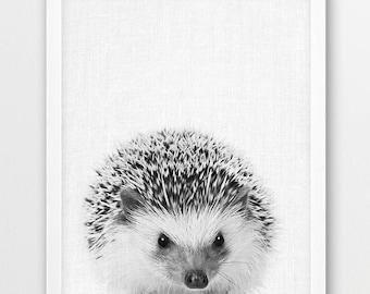 Hedgehog Print, Woodlands Animals Art Photography, Baby Shower Nursery Wall Art, Cute Hedgehog Black White Photo, Kids Room Printable Decor