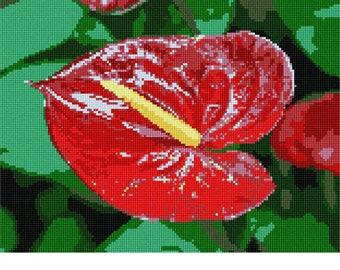 Needlepoint Kit or Canvas: Anthurium
