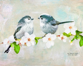 wildlife art print, long-tailed tits, wildlife art, wildlife photography, bird print, bird art, bird wall art, wildlife décor, nature print