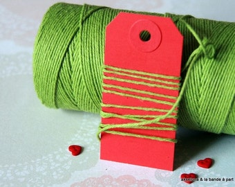 Twine Baker's Twine fine - Green Apple - 10 m ep.1mm
