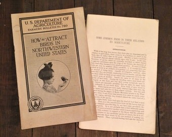 Two Early 1900s Bird Watching Books, US Department of Agriculture, 1904 1924, Farmers Bulletins