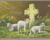 1911 Easter Wishes Postcard Featuring Beautiful Lambs Resting Near a Cross | Embossed | Divided Back | Unposted | Easter Card