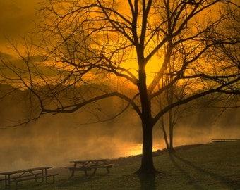 Golden Sunrise, Lake Nockamixon, Sunrise, Dawn,Early Morning, Lake, Misty, Foggy, Park, Sun Up, Print, Photograph, Canvas Wall Art