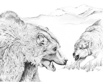 The Stand Off ~ Wildlife Print