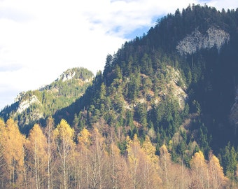 Germany photography, mountain photography, bavaria photography, travel prints, landscape photography, rustic decor, large wall art, autumn