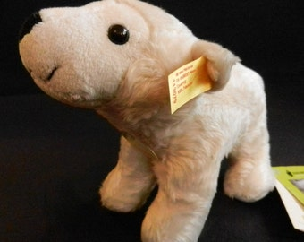 STEIFF cuddly polar bear ORIGINAL Knut from the Berlin Zoo with button, flag, sign and label