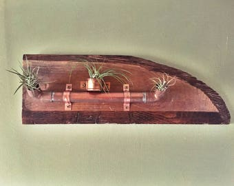 Copper Airplant Holder