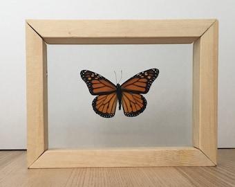 Monarch Butterfly // Real Butterfly // Dried Butterfly // Taxidermy Butterflies // Framed Butterfly