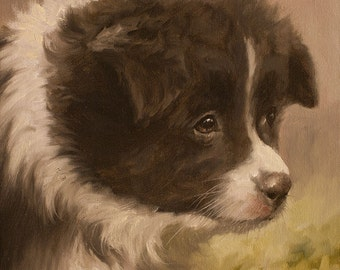 Border Collie Pup .. ORIGINAL OIL PAINTING ..  By John Silver