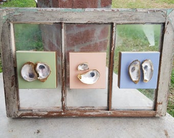 Oyster canvas on vintage glass window