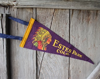 Estes Park Colorado Felt Souvenir Pennant with Indian Bust
