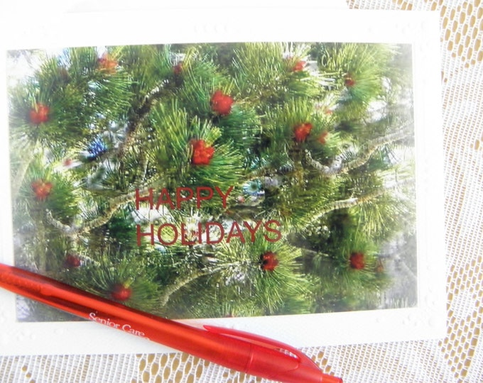 HOLIDAY Seasonal Card Set - 12 Cards and Envelopes AND Free Shipping too!