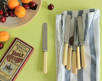 Vintage Boxed Set of 6 Dessert Faux Bone Handle Knives