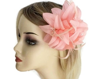 Beautiful Pale Pink Flower Fascinator on Hair Clip Corsage with Feathers Races