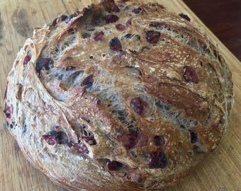 Cranberry & Walnut Whole Wheat Bread