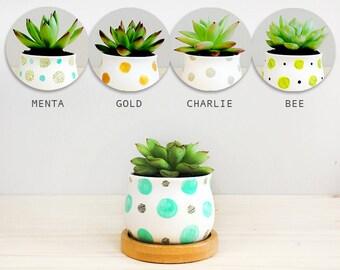 BAMBOO PETIPOT: ceramic pot, ceramic planter, flower plant pot, original gift for christmas, succulent and cactus plant, sale