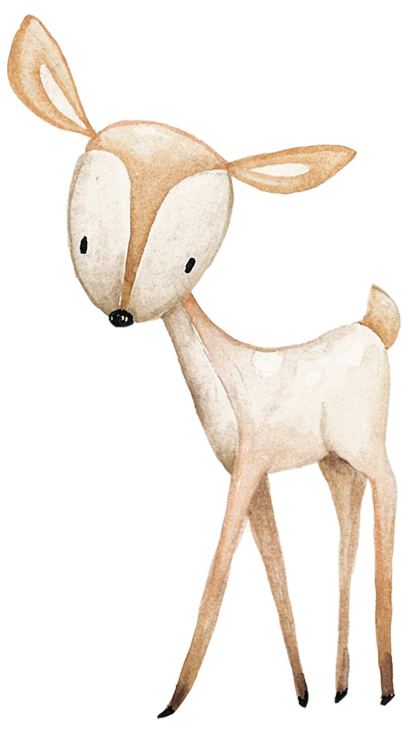 Woodland nursery animals clipart watercolor hand painted