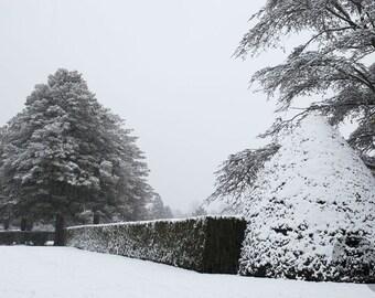 Fine Art Giclee print. Garden photograph. Winter wonderland Architectural Garden Snowy landscape
