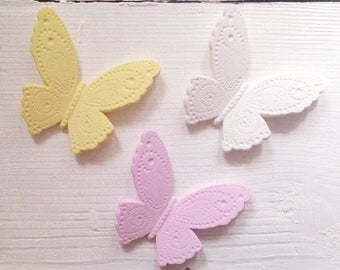 butterflies placeholder  and party gift.