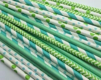 25pc Paper Straws #3