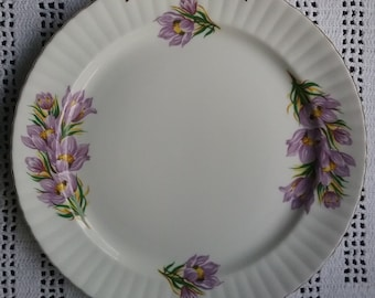 Royal Windsor Prairie Crocus Plate, Manitoba Floral Emblem, 1970s English Bone China, Purple Crocus Plate, Canadian Floral Emblem, Manitoba