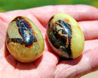 """Septarian Dragon Eggs (set of two) palm stones 116g 1 3/4"""" (45 mm)"""