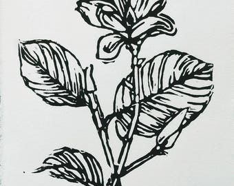 Magnolia Flower- Woodblock Prints