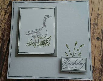 Birthday Greetings, birthday card, birthday, card, handmade card, handmade, greetings card, bird card, bird, stamped card