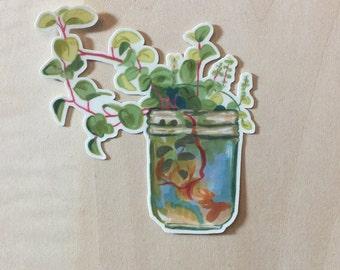 Plant Jar Vinyl Sticker