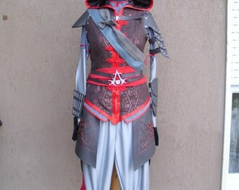 Assassin's creed cosplay costume