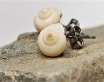 Real Beach Shell Stud Earrings