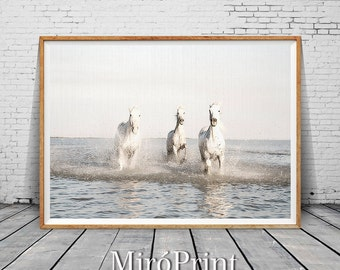 Horse Print, Horse Photography, Horse Wall Art, Fine Art Print, Nature Photography, Large Wall Art, Horse Art, Horse Decor, White Horses Art