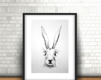 Doris/Hare/Original Art/Print/Charcoal/Drawing/Hand Signed
