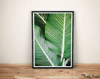 Tropical Palm Leaves Print, Plant Photography, Green Leaves Wall Art, Botanical Art, Tropical Wall Art, Large Printable Poster, Palm Print