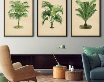 Palm Tree Wall Art palm tree print | etsy